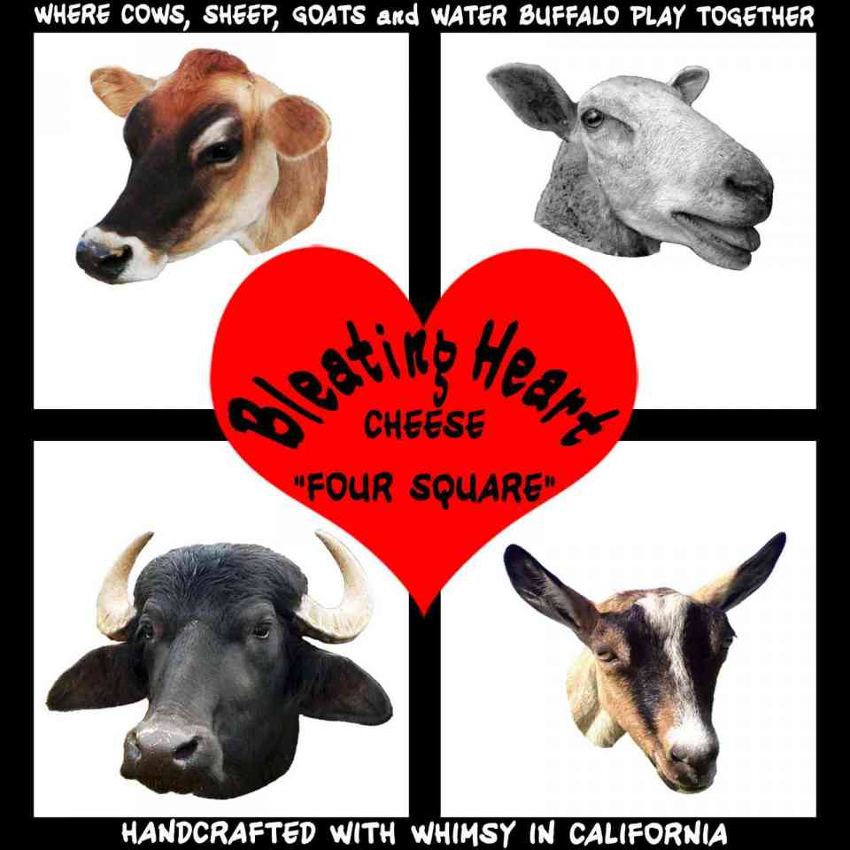 Bleating Heart Four Square mixed milk cheese logo - cow, sheep, goat, water buffalo