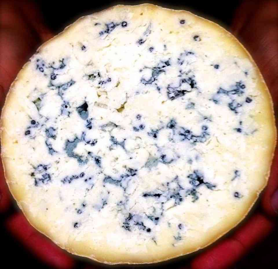 Double Down Blue from Bleating Heart Cheese