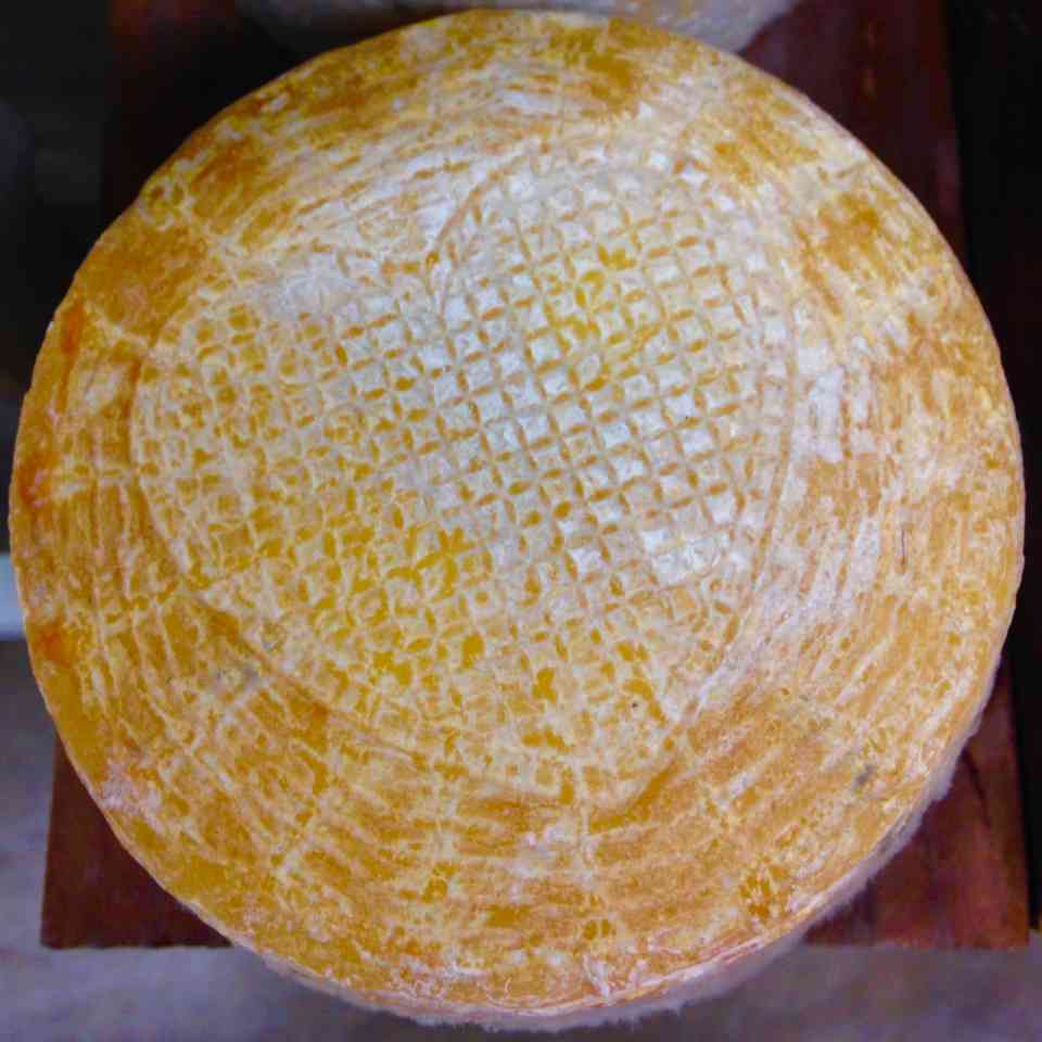 Goldette Tommette cheese from Bleating Heart