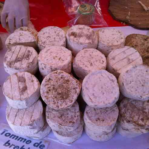 Tomme de Brebis, at the open air market in Ajaccio, birthplace of Napoleon