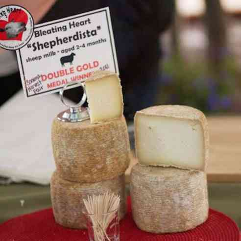 Shephedista cheese being served at the Sonoma County Harvest Fair